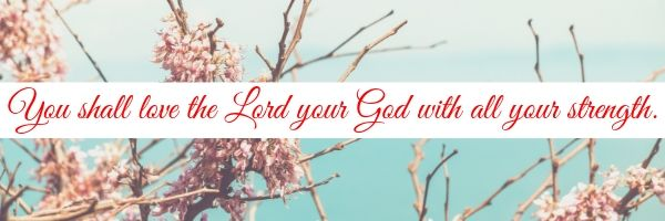 What does it mean to love the Lord with all your strength
