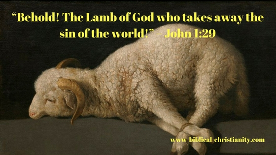"""Behold! The Lamb of God who takes away the sin of the world!"