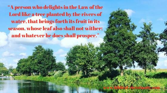 Psalms 1:1-3