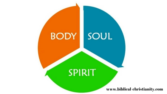The difference between the soul and spirit