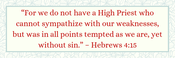 Hebrews 4:15