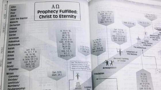 NKJV Prophecy Study Bible Review