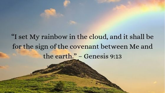 What is God's Covenant with Noah