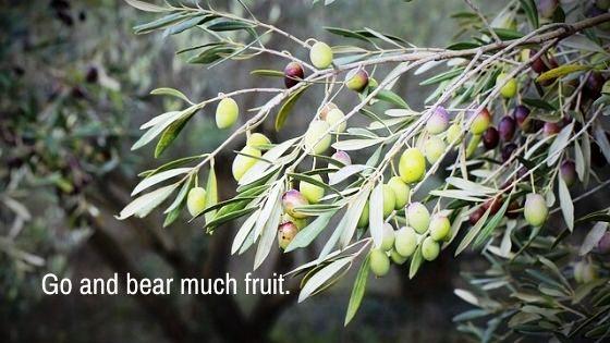 Living the Fruitful Christian Life