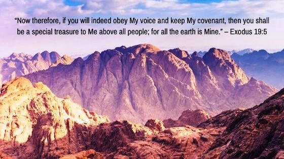 What is God's Covenant with Moses