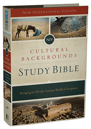 Top Rated Study Bibles