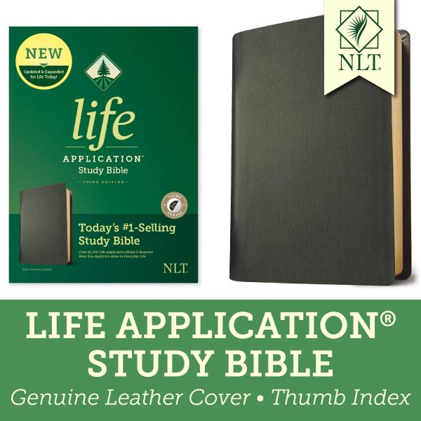 Best Rated Study Bibles
