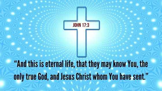 Results of the New Life in Christ
