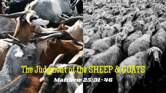 What are the 7 Judgments of God