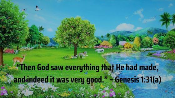 Does the Bible Teach that God Created Evil