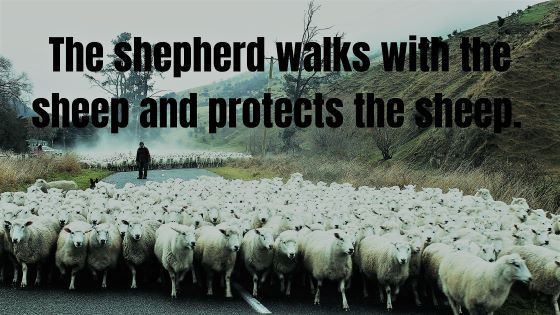 Psalm 23 The Shepherd's Song