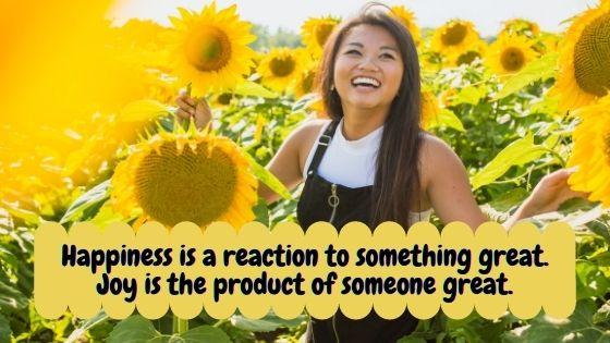 Happiness vs. Joy